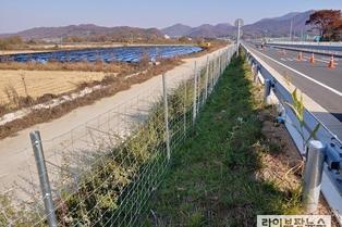 """멧돼지 이동 차단 200㎞ 광역울타리 완공…""""25일부터 집중포획"""""""