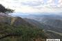 [2021 예산안] 산림청, 올해보다 9.2 증액 2조 4,303억원 국회 제출