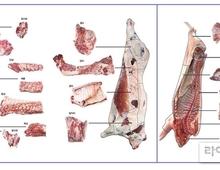 한우 한마리에서273kg·돼지62.47kg 살코기 얻는다